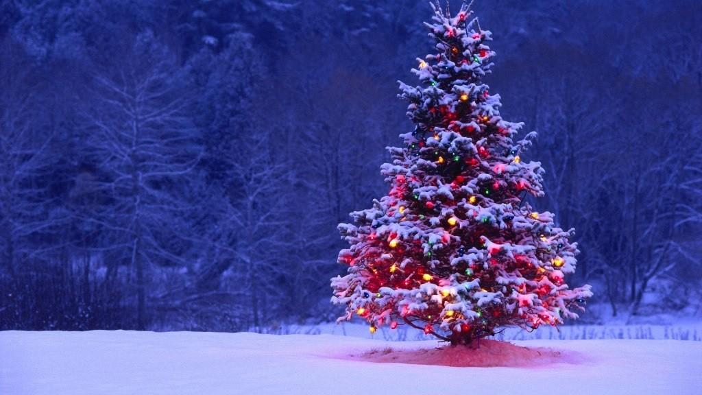 Natale Neve.Mercatini Di Natale E Piste Sciistiche Regali Tra La Neve Travelglobe