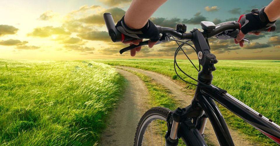 bike-open-field-sunny